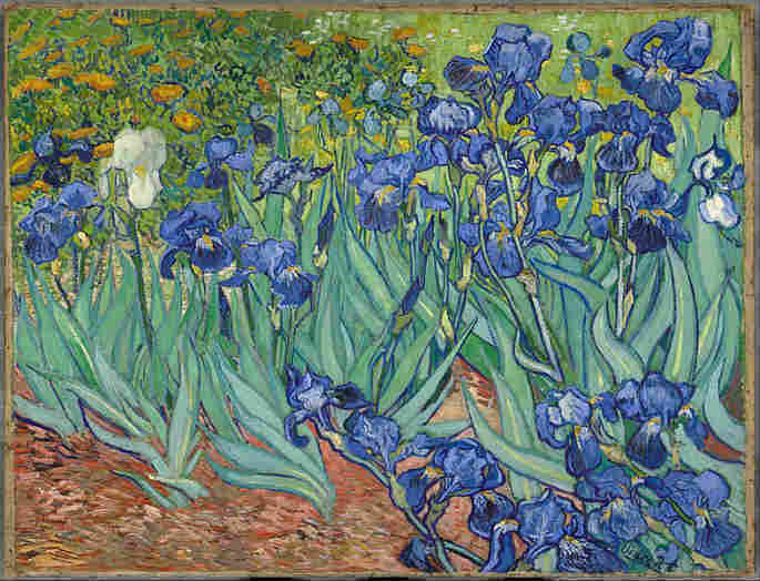 Irises by Vincent Van Gogh sold for 118.9 million dollars.