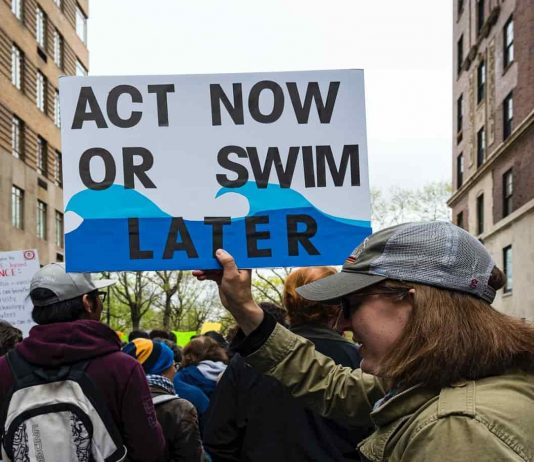 simple action to reduce global warming